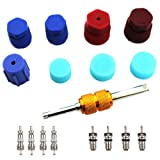 Air Conditioning Valve Core Kit | Car & Home AC R12 R134a Teflon Seal Refrigeration Schrader Valve Core with Valve Stem Core Rmover Tool Air Conditioning AC System Charging Port Seal Caps Kit