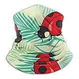 Hipiyoled Bufanda para el Cuello Mariquitas Rojas y líneas Patrón de Dibujos Animados 26cm X 30cm Sombreros para la Mano Abrigo para la Cabeza Banda para la Cabeza Deportiva Banda para el Sudor Tubo
