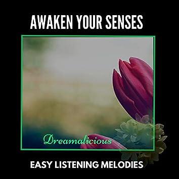 Awaken Your Senses - Easy Listening Melodies