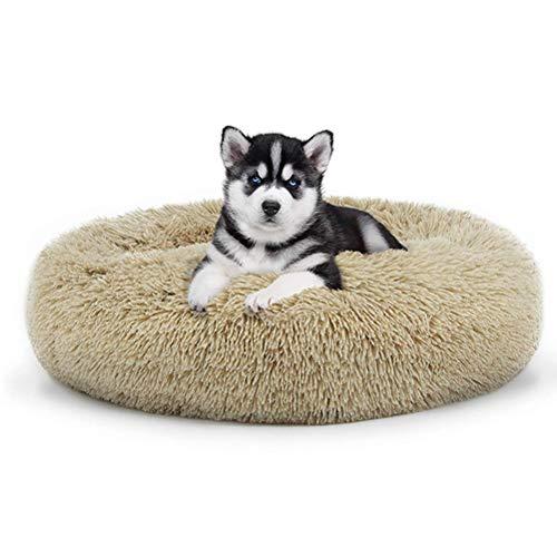 ZXLLO Hundebett Hundekissen Doughnut-Form Hundesofa Bis Mittelgroße Hunde Orthopädisches Hundebett Gesund Und Schonend Hundekörbchen Waschbar Und rutschfest,Braun,XL:80cm