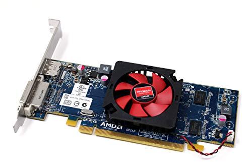 Scheda grafica AMD Radeon HD6450 1 GB PCI-E video Full altezza 1 DVI + 1 DisplayPort (DP)