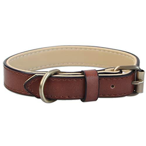 Verstellbar Echtes Hundehalsband aus Weichem Leder, Gepolstert am Besten für Kleine Mittel Grosse Hunde Großer Rassen Halsbänder (M, Braun)