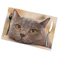 ランチョンマット ランチマット 猫 ペット 見る ブリティッシュショートヘア 目テーブルマット 撥水 防汚 断熱 滑り止め 雰囲気アップ 水洗い 家庭 レストラン用 6枚セット30cm×45cm