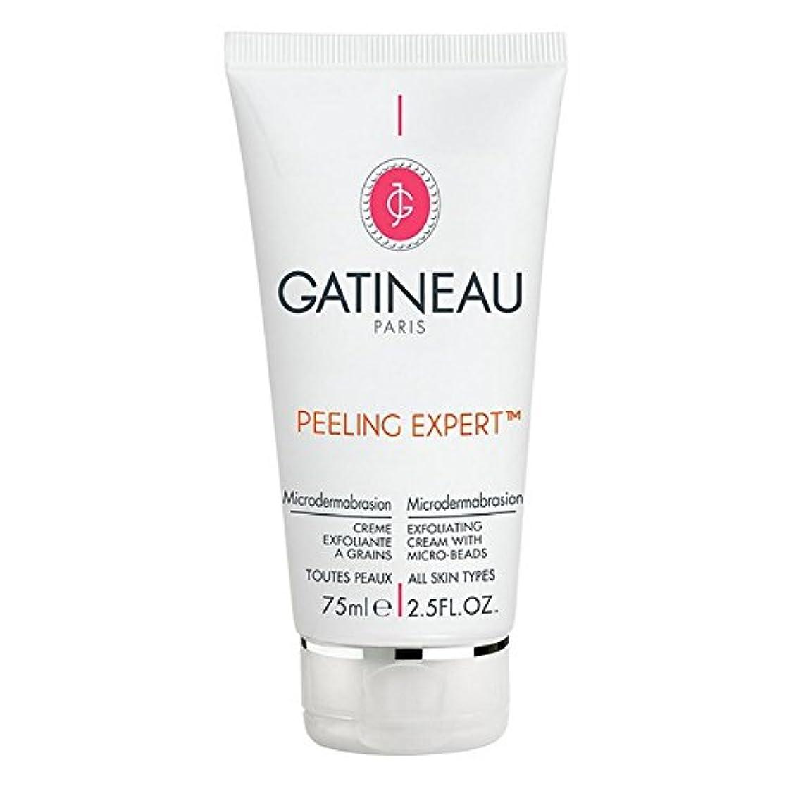 液体ラダ粘性のGatineau Pro-Radiance Microdermabrasion Cream 75ml (Pack of 6) - ガティノープロ輝きマイクロダーマブレーションクリーム75ミリリットル x6 [並行輸入品]