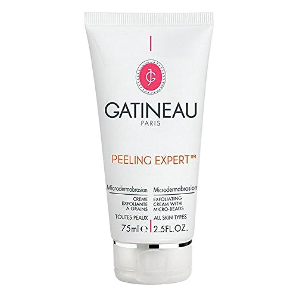 正確なヘッドレス腹部Gatineau Pro-Radiance Microdermabrasion Cream 75ml (Pack of 6) - ガティノープロ輝きマイクロダーマブレーションクリーム75ミリリットル x6 [並行輸入品]
