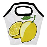 Bolsa de almuerzo térmica con diseño de limón amarillo para mujeres, hombres, niños, reutilizable, bolsa de transporte con cremallera, adecuada para el trabajo, al aire libre, viajes, picnic, escuela