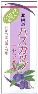 札幌グルメフーズ 北海道ハスカップキャラメル 18粒×10個