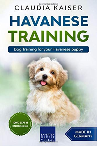 Havanese Training: Dog Training for your Havanese puppy