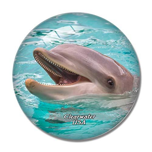 3D-Kühlschrankmagnet, USA, Amerika, Clearwater Marine Aquarium, Whiteboard, Magnet, Souvenir, Kristallglas