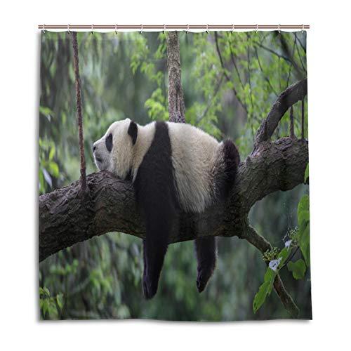 BIGJOKE Duschvorhang, Tier-Panda-Motiv, schimmelresistent, wasserdicht, Polyester, 12 Haken, 167,6 x 182,9 cm, Heimdekoration