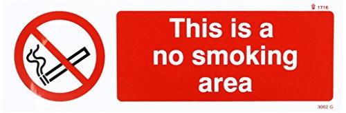 Caledonia segni 23002G alcun segno zona fumatori, vinile autoadesivo, 300mm x 100mm