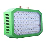 600w Led Grow Light, Double Chips LED Grow Light Full Spectrum Grow Lamp for Indoor Greenhouse Hydroponic Plants Veg and Flower (600w led Grow Light)