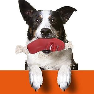 Chien Jouets Pet molaire dent nettoyant brossage bâton entraînement Chien mâcher Jouet Chiens Brosse à Dents Doggy Chiot Soins dentaires Chien Pet Chiots