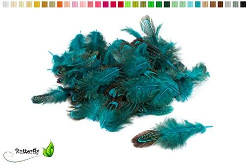 3g Fasanenfedern ca. 3-8cm (dunkel türkis 340D) // Bastelfedern Vogelfedern Schmuckfedern Natur Fasan Federn Deko ca. 130-140 Stück