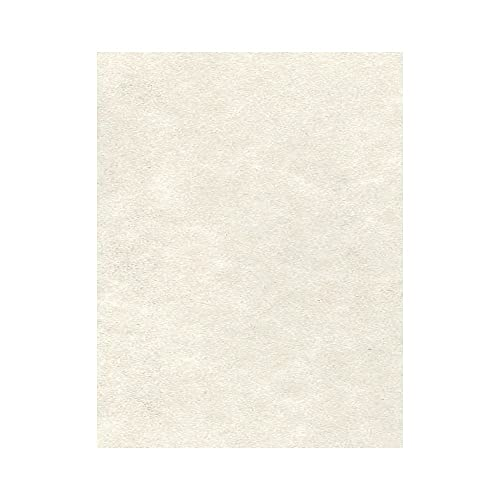 8 1/2 x 11 Cardstock - Cream Parchment (50 Qty.)