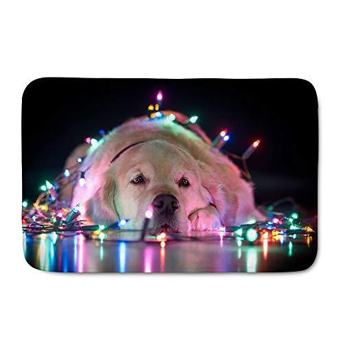 Amzbeauty Alfombra de Navidad para interiores y exteriores, suave para entrada, para vacaciones, cocina, baño, felpudo con impresión de gato y perro