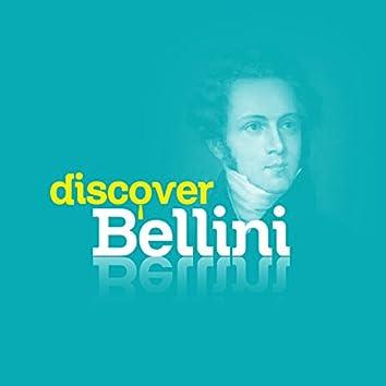 Discover Bellini