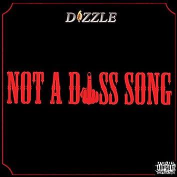 Not a Diss Song