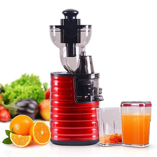Nidouillet Slow Entsafter Mastisierer, Saftpresse mit Rückwärtsfunktion, hohe Nährstoffe Obst- und Gemüsesaft, leicht zu reinigen AB035