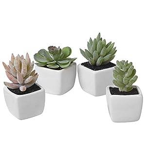 Silk Flower Arrangements Set of 4 - Assorted Mini Artificial Succulent Plants in White Ceramic Pots