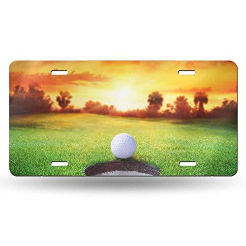 WALL-8-CC Bola de golf deportiva Sunset Tree placa de licencia para parte delantera de coche, etiqueta de vanidad, placa de matrícula de metal, placa de aluminio novedad, 6 x 12 pulgadas (4 agujeros)