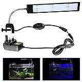 Laelr - Luz LED para acuario, acuario, acuario, con clip, luz de pinza, con...