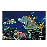 FGVB Acuario de Peces de Colores Mundo Submarino exótico decoración de Animales póster Sala de Estar Arte de la Pared decoración del hogar Sala de Estar Oficina Dormitorio 50 x 75 cm sin Marco