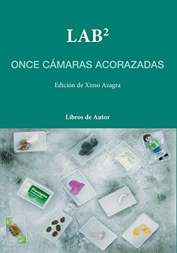 LAB2 - Once cámaras acorazadas (Libros de Autor)