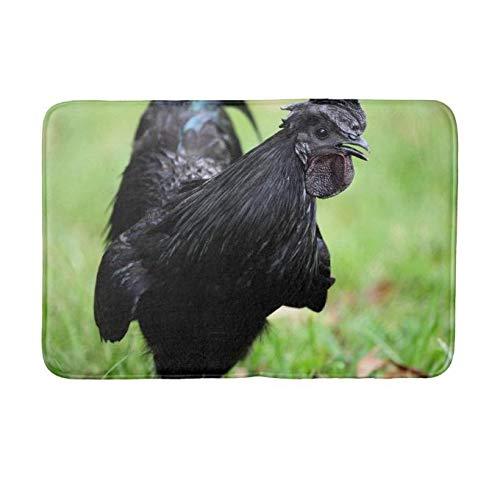"Yesstd Absorbent Super Cozy Bath Mat Doormat Welcome Mats Indoor/Outdoor Bath Floor Rug Decor Art Print with Non Slip Backing Ayam Cemani Black Rooster (30"" L x 18"" W) Inch."