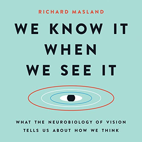 We Know It When We See It audiobook cover art