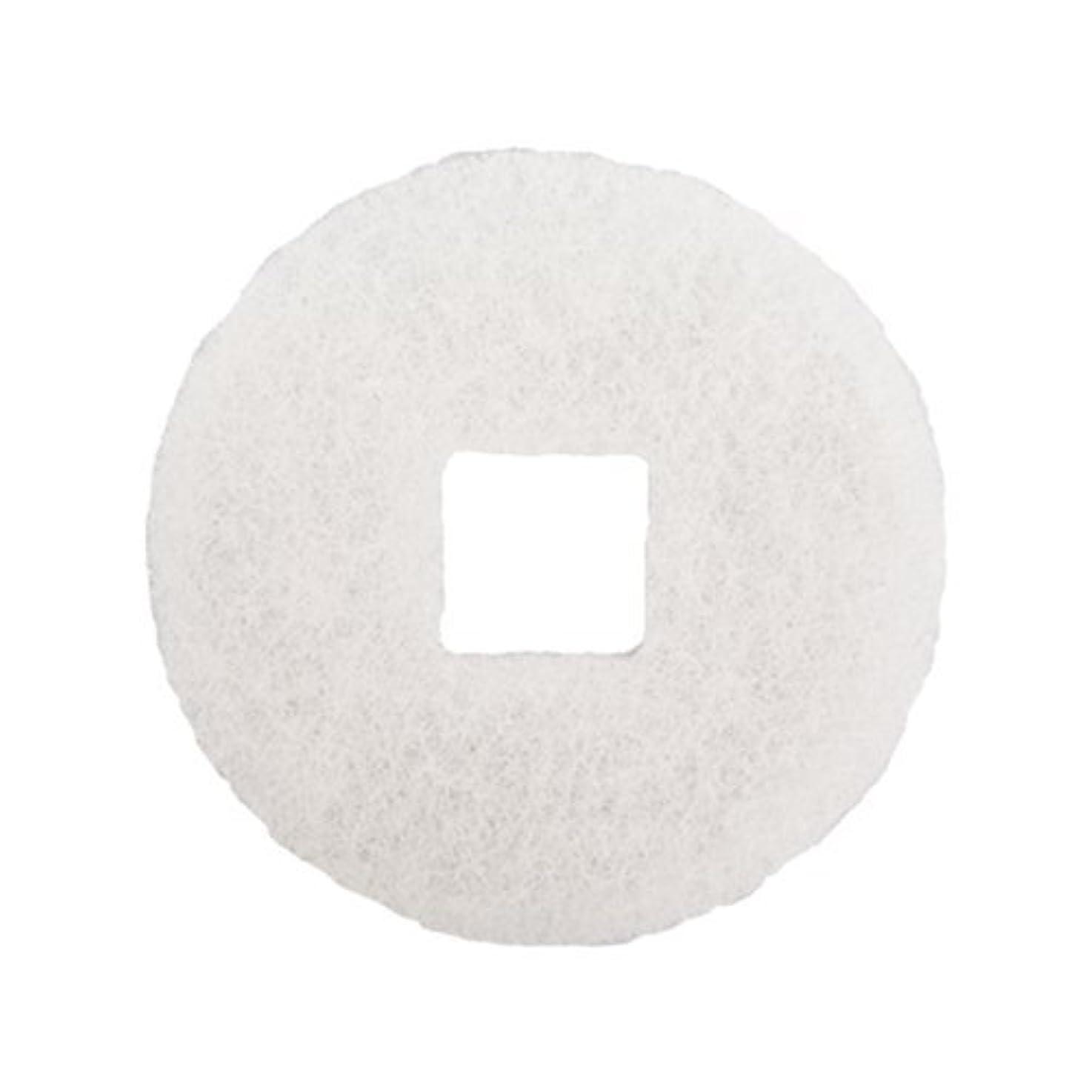 海畝間として大建プラスチックス100MPS(K)5用空気浄化フィルター(5枚入)
