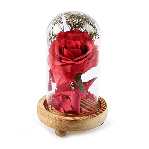 JKLEUTRW Rose Incantate Elegante Rosa Seta Artificiale Scintillio con Paralume in Vetro Luci LED Striscia Regalo per San Festa Compleanno Decorazione Copertura Fiore Micro (Multicolore)