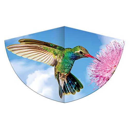 Cometa Infantil con diseño de colibrí de una Sola línea, Hecha de Resistente lámina de Polietileno con báscula de dragón Ajustable, para niños a Partir de 4 años, con asa y Cuerda, Aprox. 75 x 48 cm