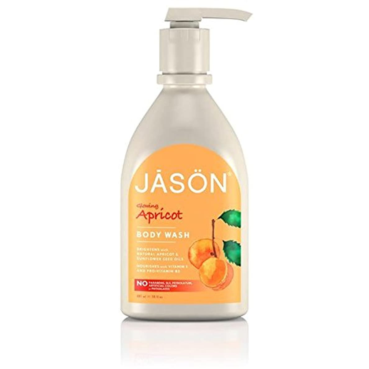 ロッカー症状マンハッタンJason Apricot Satin Body Wash Pump 900ml (Pack of 6) - ジェイソン?アプリコットサテンボディウォッシュポンプ900ミリリットル x6 [並行輸入品]
