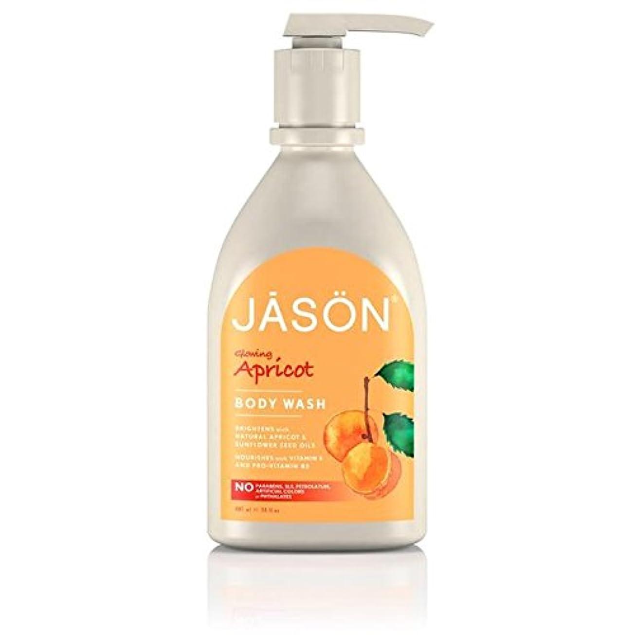 豊かな電子抑圧者Jason Apricot Satin Body Wash Pump 900ml (Pack of 6) - ジェイソン?アプリコットサテンボディウォッシュポンプ900ミリリットル x6 [並行輸入品]