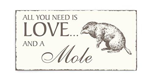 SCHILD Dekoschild « All you need is LOVE and a MOLE » Maulwurf 02 Shabby Vintage houten bord deurplaat