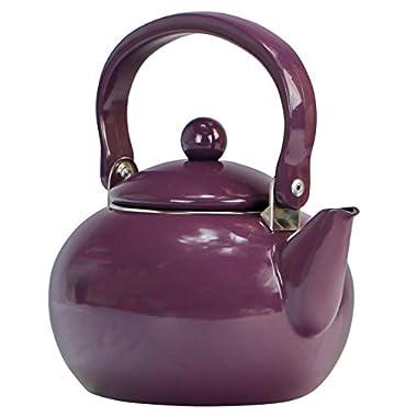 Calypso Basics by Reston Lloyd Enamel-on-Steel Tea Kettle, 2-Quart, Plum