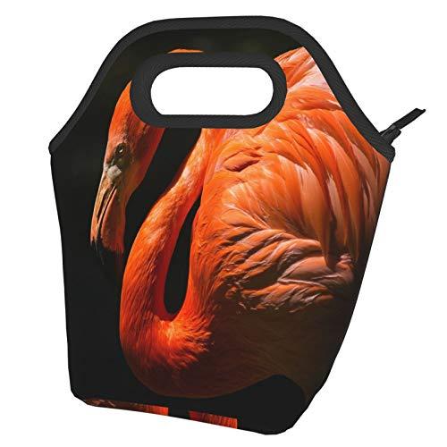 Flamingo - Bolsas de papel pintado con aislamiento portátil para el almuerzo, reutilizable, para hombres, adultos, niñas, trabajo, escuela, picnic, etc.