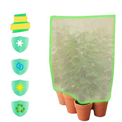 Minetom - 2 Bolsas Protectoras para Plantas de Invierno, protección contra heladas, Saco para Plantas en Maceta, Saco Protector para Plantas con...
