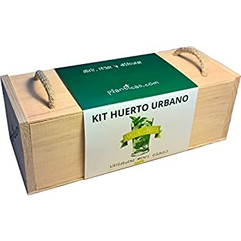 Kit de Huerto Urbano: Edición Especial Mojito: Amazon.es: Jardín