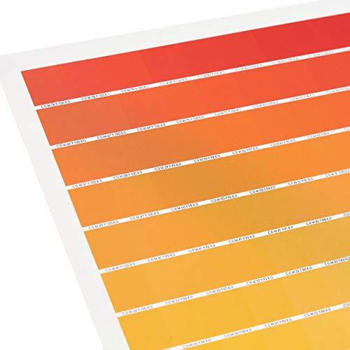 The Really Useful CMYK Colour Chart - 1025 échantillons de couleurs CMJN uniques sur 1 affiche - Alternative au livre de couleurs Pantone & à la Roue Chromatique - Taille A1 - Version roulée