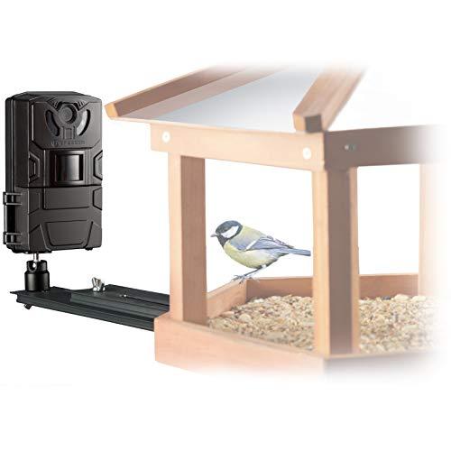 Bresser vogel-camera SFC-1 bewakingscamera voor vogels thuis of andere kleine dieren met bewegingssensor voor foto's en video's in Full HD kwaliteit