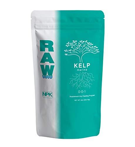 RAW Kelp (8 oz)