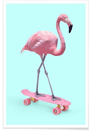 Juniqe Design Skate Flamingo - Flamants Roses Affiche 60x90cm in Bleu & Rose - créé par Paul Fuentes