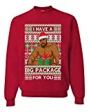 I have a Big package Meme Barry Wood Ugly Christmas Sweater Unisex Crewneck Graphic Sweatshirt, Red, Large