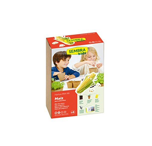 SEMBRA - juego educativo, Kit huerto Maíz para palomitas