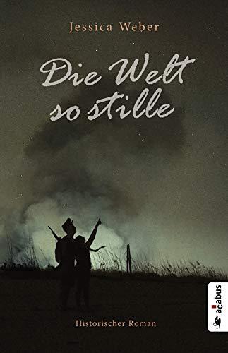 Die Welt so stille: Historischer Roman aus dem Deutsch-Dänischen Krieg