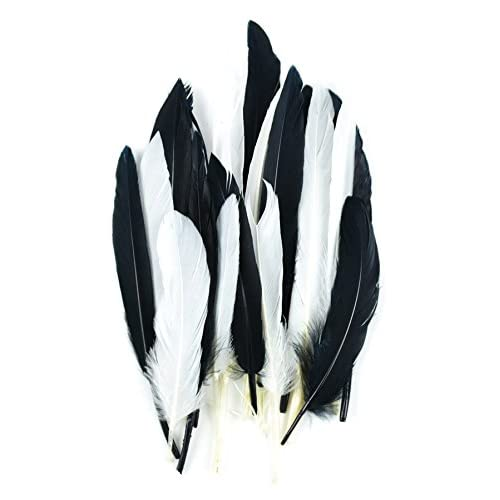 3 Touch of Nature 38372 Mini Turkey 24 Piece Quill Feathers Mix Gray//Ash Gray//Silver