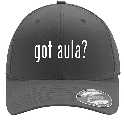 got Aula? - Adult Men's Flexfit Baseball Hat Cap, Silver, Small/Medium