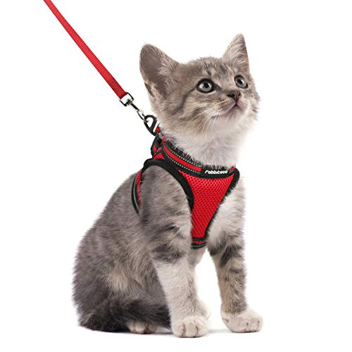 rabbitgoo Cat Harness and Leash Set for Walking Escape Proof, Adjustable Soft Kittens Vest with Reflective Strip for Cats, Step-in Comfortable Outdoor Vest, Red, S (Chest:9.0